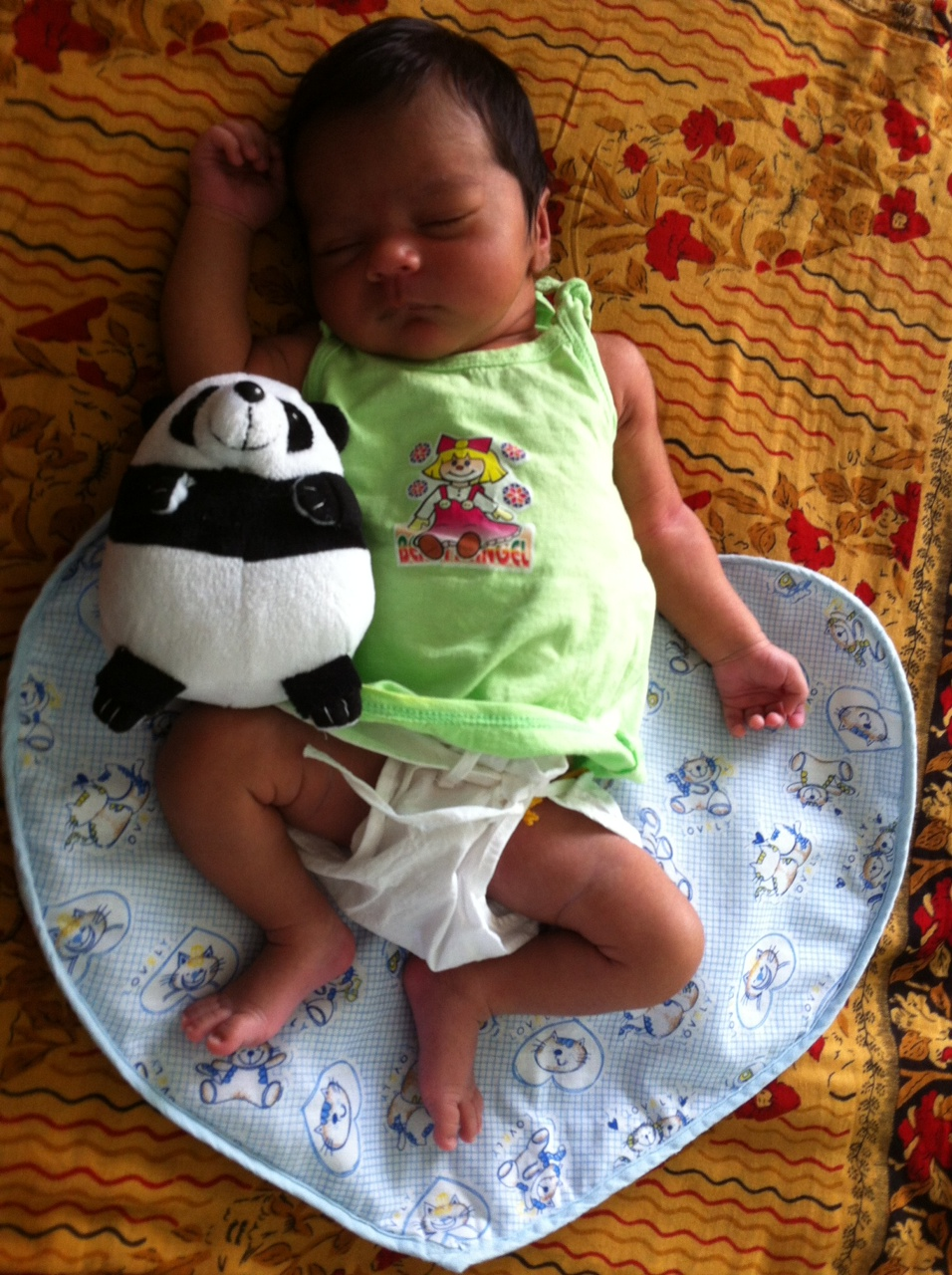 Sleeping with panda