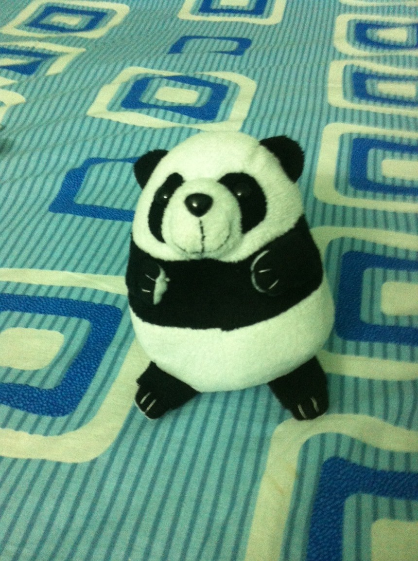 Panda, my first soft toy !